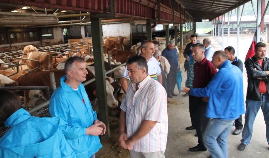 06.08.2014 posjeta Jerka Ivankovica Lijanovica farmi muznih krava Ledenicka dolina